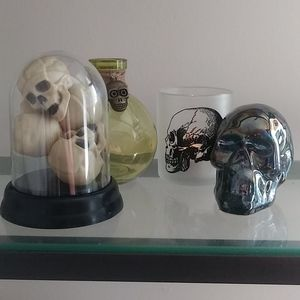 Bundle of Skull Decor